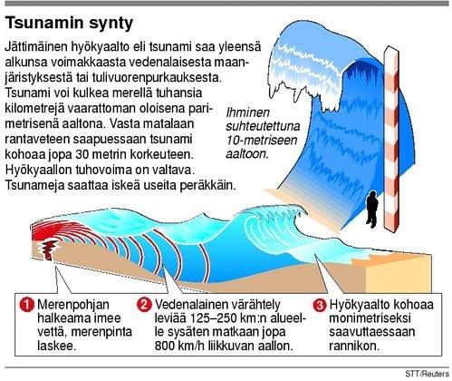 Tsunamin Synty