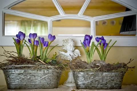Silkkikukista saa tehtyä kestävämpiä kevätasetelmia kuin aidoista kukista.