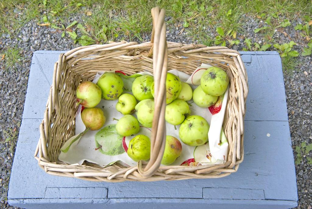 Omenapörssi