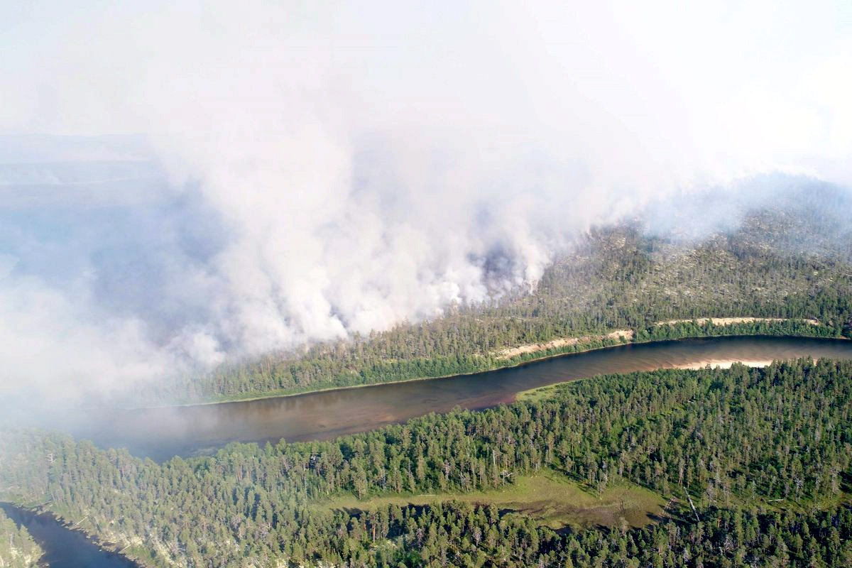 Sadekuurot tulivat Lapissa apuun metsäpalojen sammutuksessa
