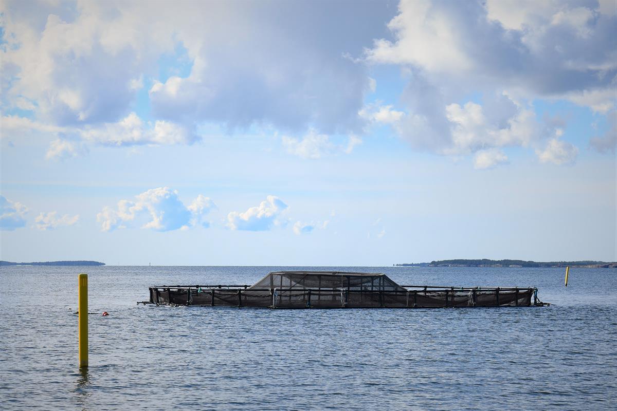 Upotettava kasvatusallas näyttää päällepäin aivan tavalliselta kalankasvatusaltaalta. Sen päälliosan verkko on kiinnitetty vetoketjuin, mutta muutoin rakenne on samankaltainen. Tässä allas on normaalilla tavalla pinnalla. Se lasketaan upoksiin vain olosuhteiden niin vaatiessa.