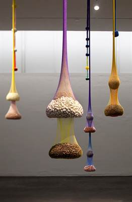 Ernesto Neto: Variation on Color Seed Space Time Love, 2009.